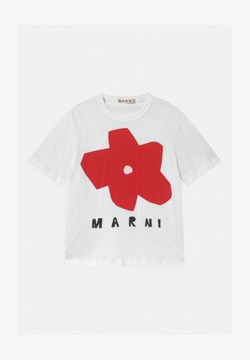 MAGLIETTA - Print T-shirt - white