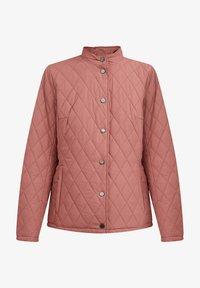 Finn Flare - Light jacket - dark pink - 4