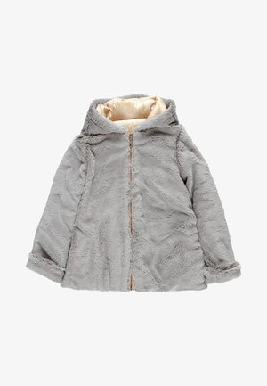 REVERSIBEL TECHNISCHES - Winter jacket - fog