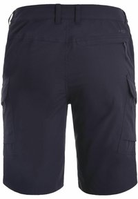 Icepeak - BRASWELL  - Outdoor shorts - anthracite - 1
