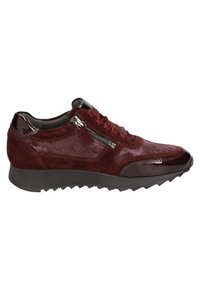 Sioux - OSEKA-J - Trainers - red - 6