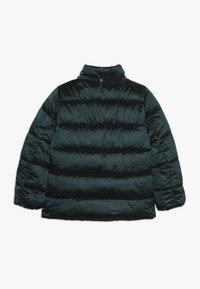 Kids ONLY - KONNAIOMI HOODED JACKET - Winter jacket - ponderosa pine - 2