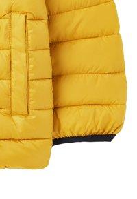 Tom Joule - Winter jacket - antik gold - 3