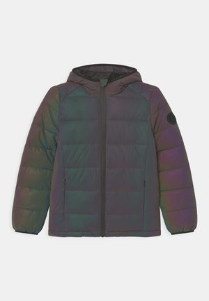 PADYN REFLECTING - Winter jacket - grey