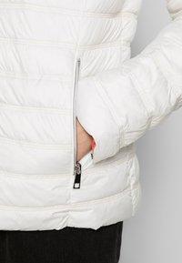 Barbara Lebek - JACKE STEPP MIT KAPUZE - Light jacket - offwhite - 4