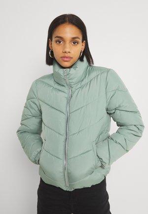 Winter jacket - light green/silver coloured