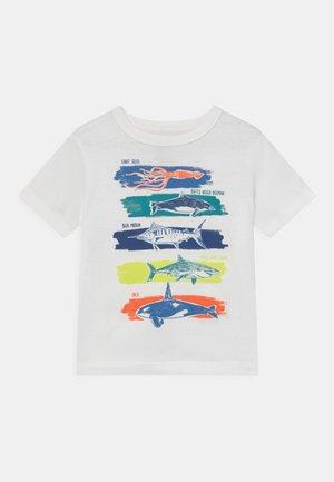 TODDLER BOY - T-shirt print - new off white
