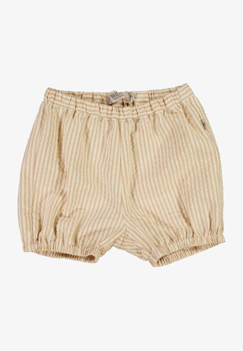 Wheat - OLLY - Shorts - taffy stripe