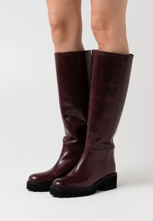 TINY - Platform boots - bordeaux