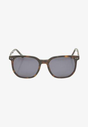 WAYFARER  - Sunglasses - havanna black