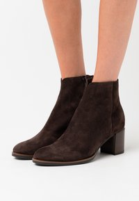Maripé - Ankle boots - testa di moro - 0