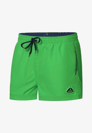 Swimming shorts - lime/cobalt