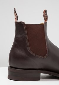 R. M. WILLIAMS - COMFORT CRAFTSMAN SQUARE G FIT - Classic ankle boots - chesnut - 5