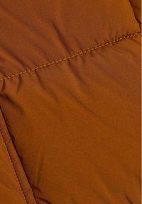 Esprit - BASIC PUFFER - Winter jacket - toffee - 8
