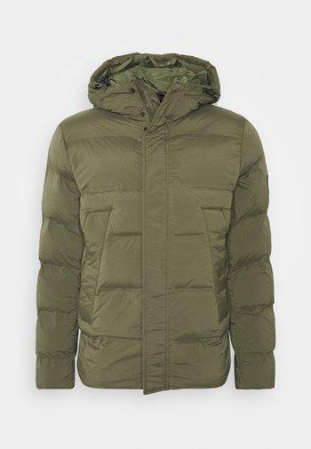 HOODED STRETCH - Zimní bunda - green