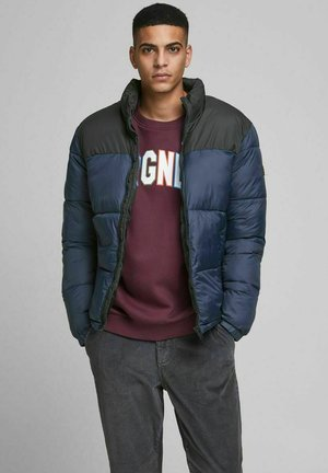 PUFFER COLLAR - Winter jacket - navy blazer