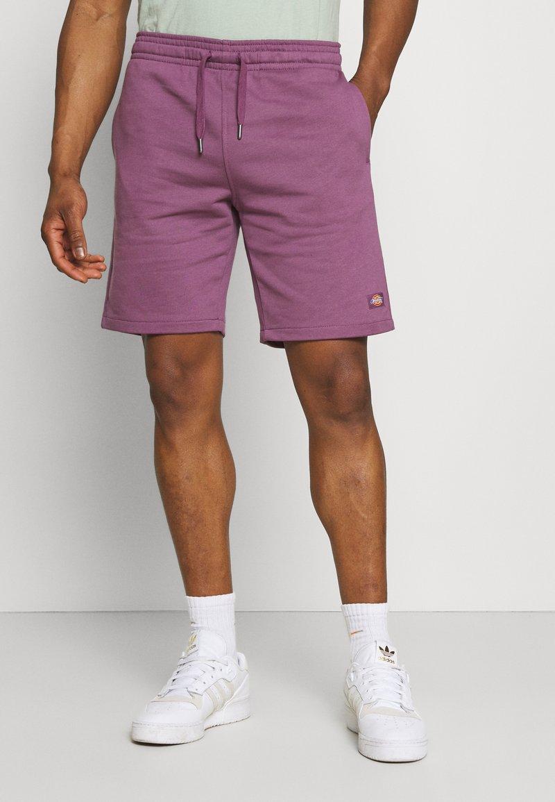 Dickies - CHAMPLIN - Shorts - purple gumdrop