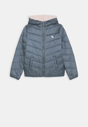 COZY PUFFER - Winter jacket - blue