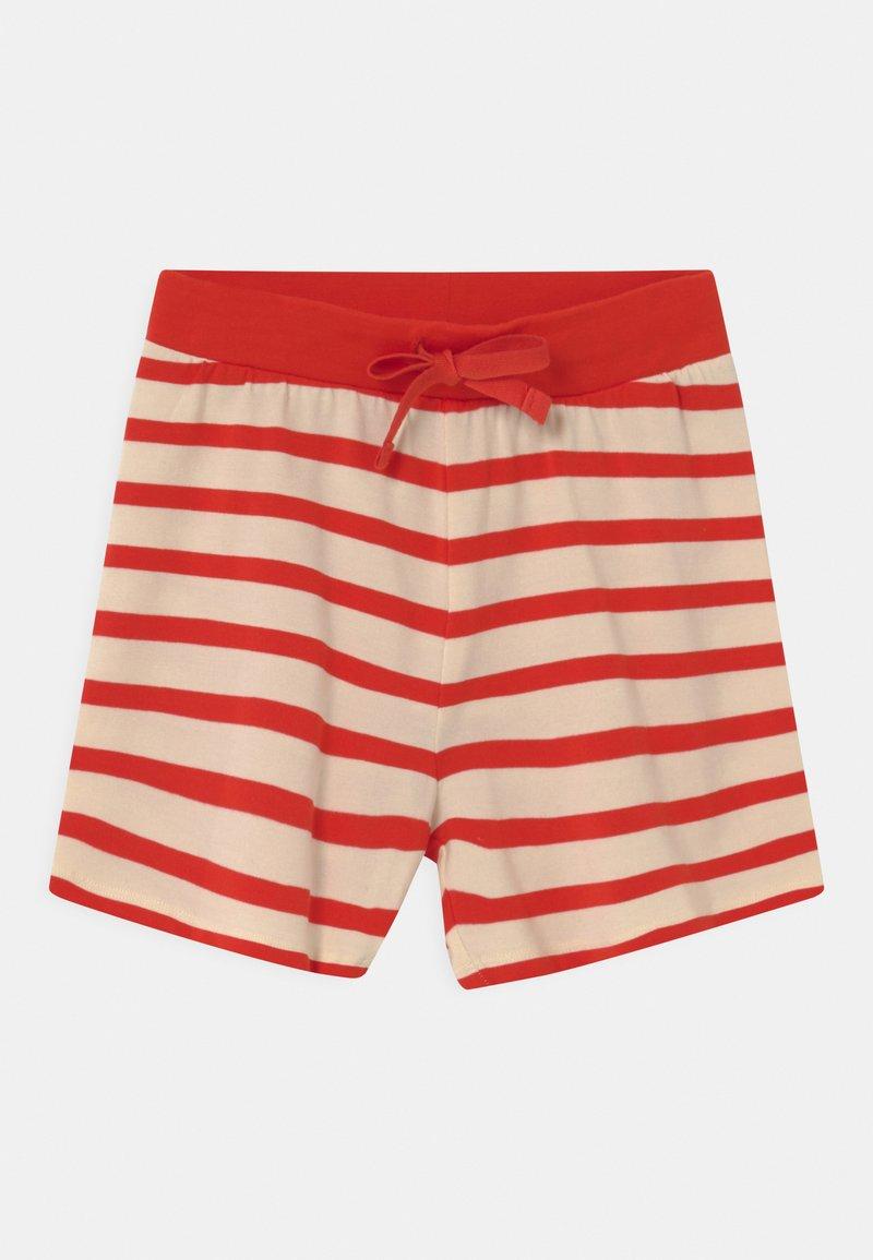 Mini Rodini - STRIPE UNISEX - Shorts - red