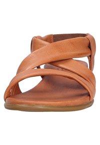 ILC - Sandales - brown - 6