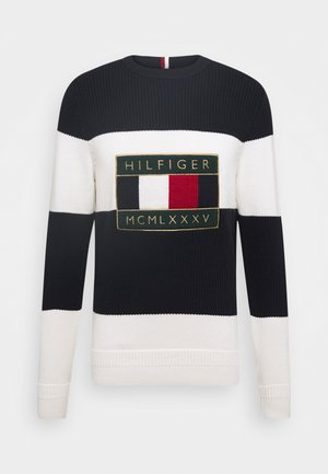 ICONIC GRAPHIC - Sweter - white