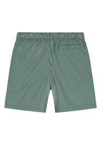 Shiwi - Swimming shorts - pine green - 4