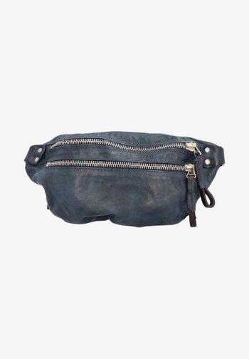 Bum bag - river