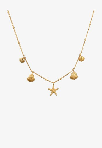 SHELL STAR FISH - Collier - gold