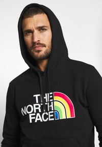 The North Face - RAINBOW HOODY - Mikina s kapucí - black - 3