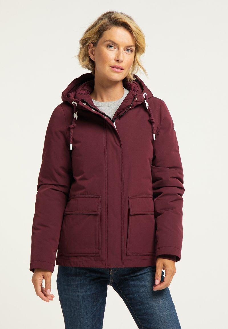 ICEBOUND - Winter jacket - bordeaux