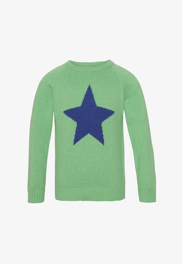 CALVIN - Trui - light green