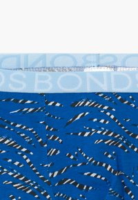 Bonds - 3 PACK - Pants - blue/green - 3