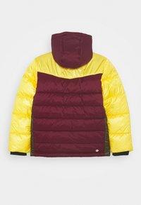 Vingino - TALPH - Zimní kabát - dark blue - 1