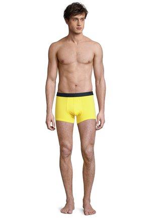 3 PACK - Pants - yellow