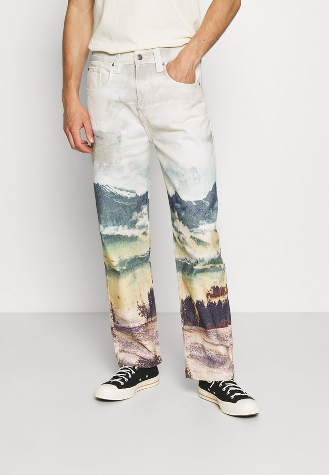 LANDSCAPE SKATE - Relaxed fit jeans - multi