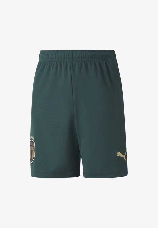 ITALIA - Shorts - ponderosa pine-peacoat