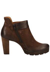 Paul Green - STIEFELETTE - High heeled ankle boots - dunkelbraun - 2