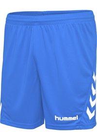 Hummel - Sports shorts - diva blue - 5