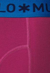 MUCHACHOMALO - VARI 3 PACK - Boxerky - dark blue/royal blue/purple - 2