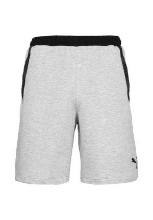 TEAMFINAL  - Sports shorts - light gray heather