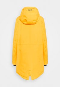 COLOURWEAR - TRACK - Snowboardjacke - yellow - 1