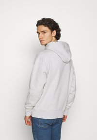 Tommy Jeans - BADGE HOODIE UNISEX - Sweat à capuche - silver grey heather - 2