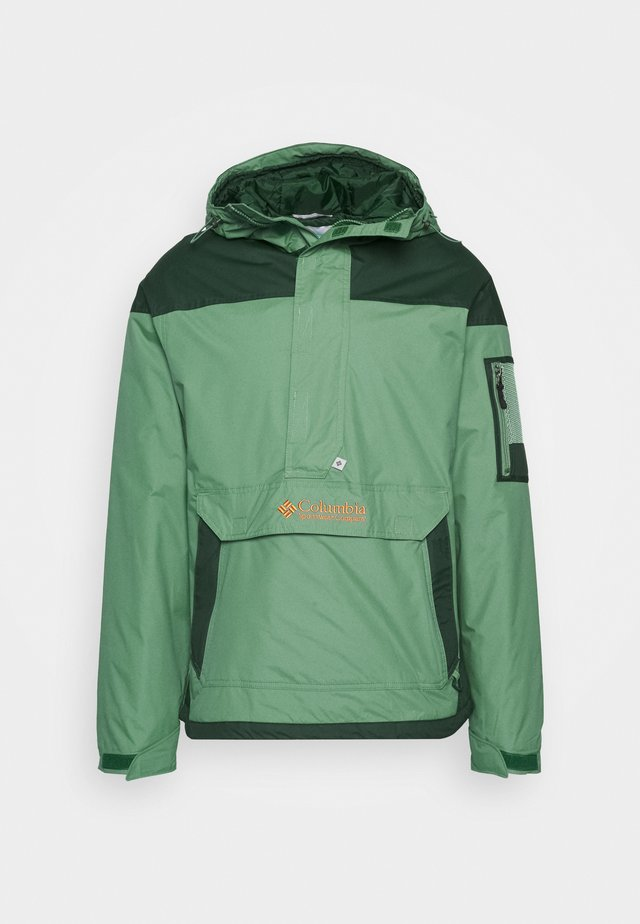 CHALLENGER - Winter jacket - thyme green/spruce