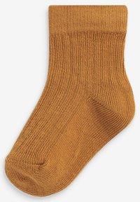 Next - 7 PACK - Socks - brown - 6