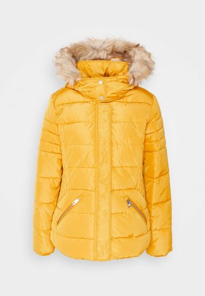 JACKET - Vinterjakke - brass yellow