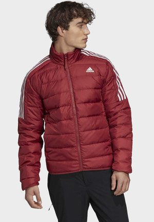 Veste de running - red