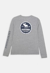Abercrombie & Fitch - VINTAGE PRINT LOGO - Long sleeved top - grey - 1