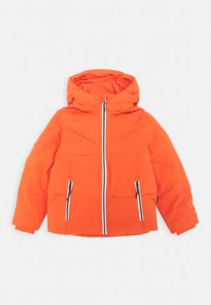 WORKING WEASEL UNISEX - Winter jacket - spicy red