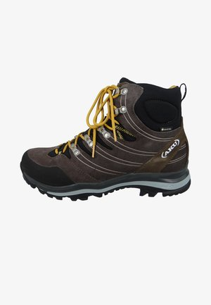 WANDERSCHUHE ALTERRA GTX 402 - Mountain shoes - brown/black