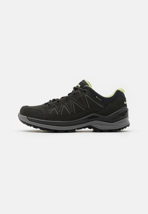 TORO EVO GTX LO - Outdoorschoenen - anthracite/mint